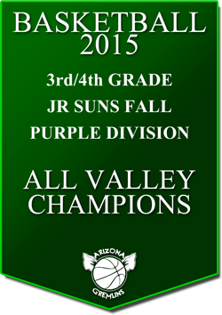 banner 2015 JR SUNS CHAMPS FALL AV PURPLE