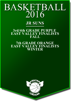 banner 2016 JR SUNS LEAGUE cont