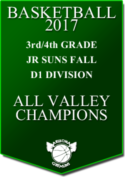 banner 2017 JR SUNS CHAMPS FALL AV D1