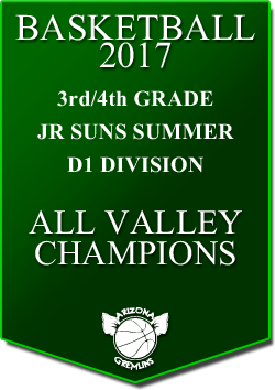 banner 2017 JR SUNS CHAMPS SUMMER AV D1