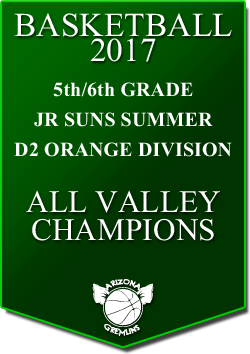 banner 2017 JR SUNS CHAMPS SUMMER AV D2 ORANGE