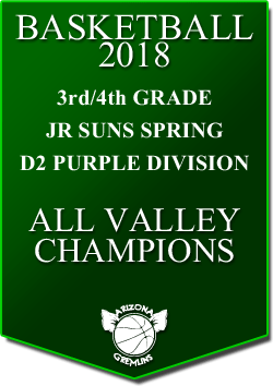 banner 2018 JR SUNS CHAMPS SPRING AV PURPLE