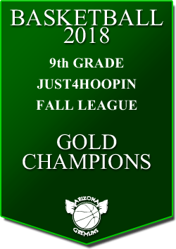 banner 2018 LEAGUE CHAMPS Fall 9th