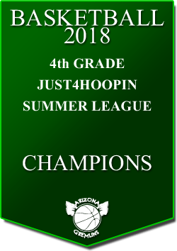 banner 2018 LEAGUE CHAMPS Summer 4th