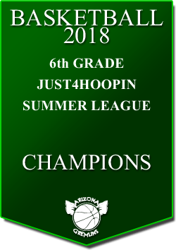 banner 2018 LEAGUE CHAMPS Summer 6th