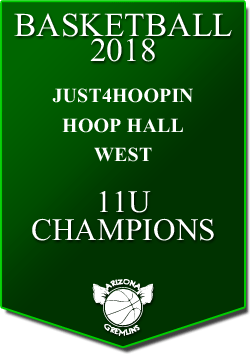 banner 2018 TOURNEYS CHAMPS HoopHall 11u