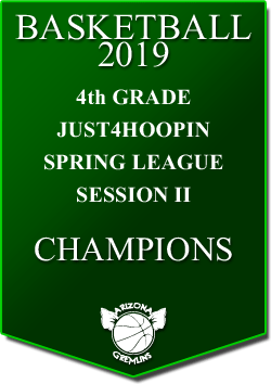 banner 2019 LEAGUE Champs 4th spring