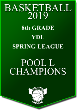 banner 2019 LEAGUE Champs YDL 8th spring