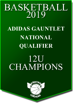 banner 2019 TOURNEYS CHAMPS AG 12U