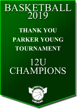 banner 2019 TOURNEYS CHAMPS PY 12U
