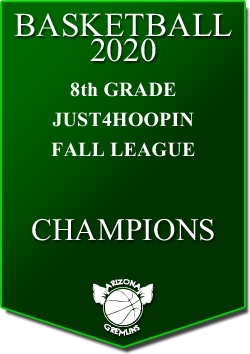 banner 2020 LEAGUE Champs 8th fall