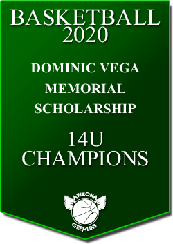 banner 2020 TOURNEYS CHAMPS DV 14U