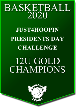 banner 2020 TOURNEYS CHAMPS PREZ 12U