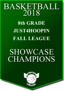 banner 2018 LEAGUE CHAMPS Fall 8th