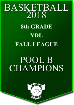 banner 2018 LEAGUE CHAMPS Fall YDL 8th