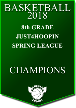 banner 2018 LEAGUE CHAMPS Spring 8th