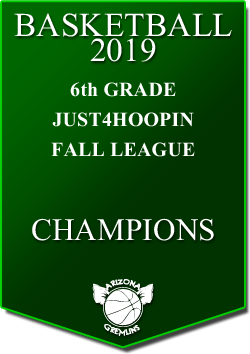 banner 2019 LEAGUE Champs 6th fall