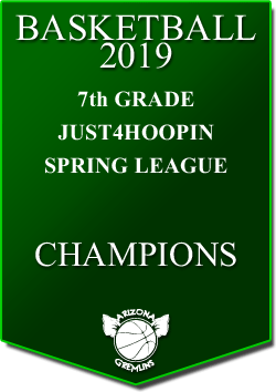 banner 2019 LEAGUE Champs 7th spring