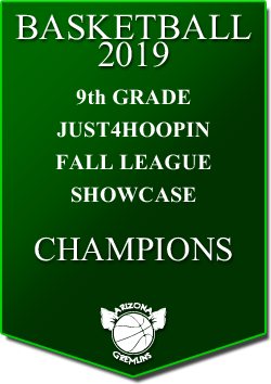 banner 2019 LEAGUE Champs 9th fall